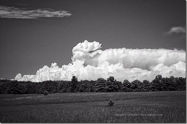 Clouds 061613.01.1024